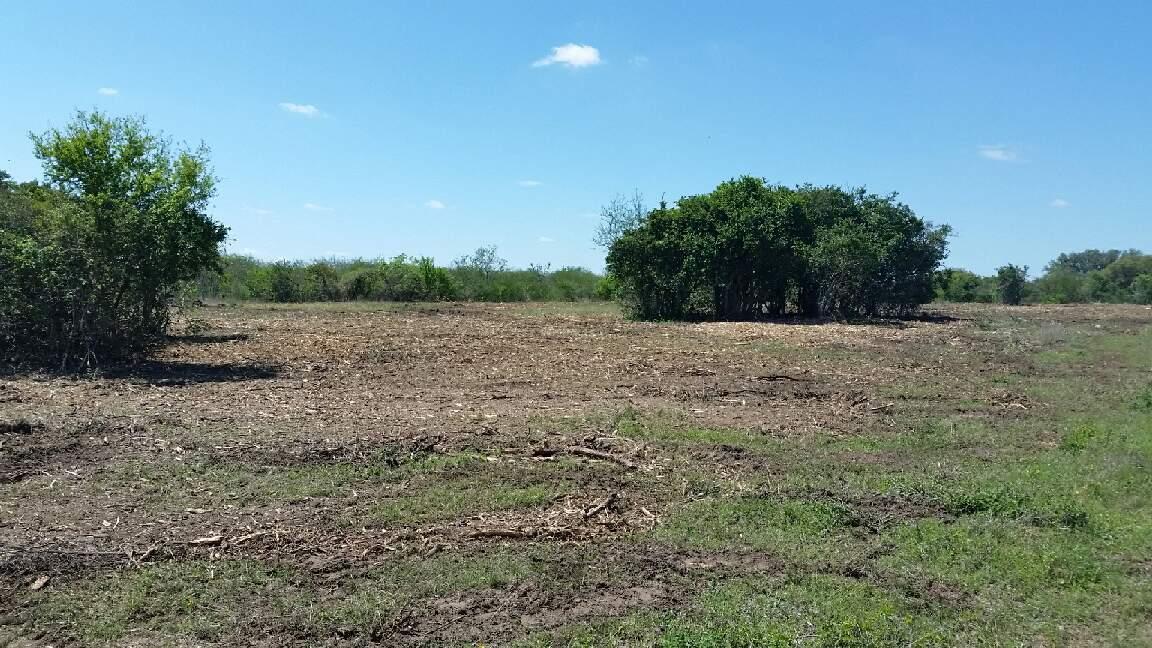 Land Clearing Service Goliad Victoria Tx Copano Bay